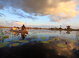Botswana Safari Content 1 - Ultimate Wildlife Adventures