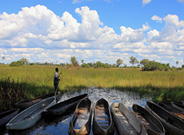 Canoeing and Makoro Content 2 - Ultimate Wildlife Adventures