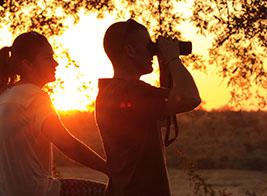 Honeymoon Safari Content 1 - Ultimate Wildlife Adventures