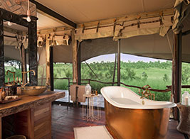Honeymoon Safari Content 2 - Ultimate Wildlife Adventures
