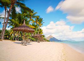 Mauritius Content 3 - Ultimate Wildlife Adventures