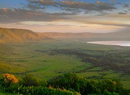 Tanzania Safari Content 1 - Ultimate Wildlife Adventures