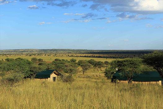 Tanzania & Zanzibar Luxury Honeymoon, Kiota Camp 3 - Ultimate Wildlife Adventures