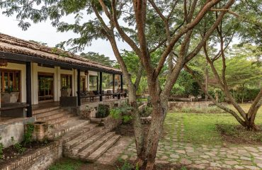 Kyambura Gorge Lodge is situated amongst beautiful grounds open to wildlife passing through.