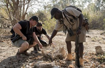 Walking safari aims to unearth the story of the bush.