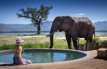 Safari never ends in Mana Pools National Park. Relax around the pool whilst elephants pass by.