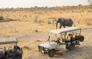 Game drives are just one of the many activities on offer at Hwange National Park.