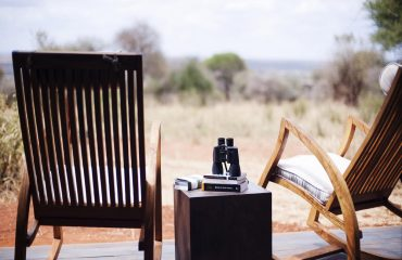 Dig out the binoculars and watch the world go by. Nothing beats an armchair safari.