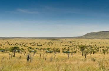 Kiota Camp sitting proudly overlooking the quintessential Serengeti Plains