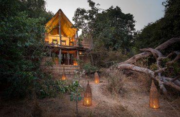 Chikoko Tree Camp