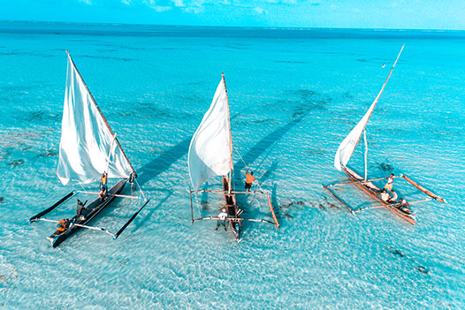 Tanzania & Zanzibar Luxury Honeymoon, Zanzibar Island 3 - Ultimate Wildlife Adventures
