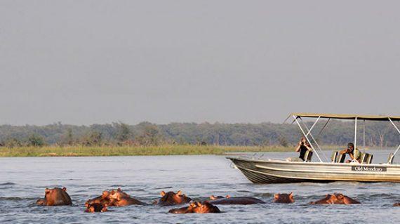 luangwa-zambezi-explorer-itinerary-2