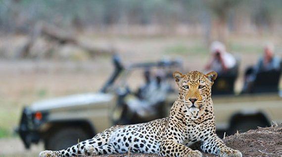 luangwa-zambezi-explorer-itinerary