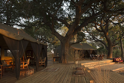Tanzania Wild West, Chada Camp - Ultimate Wildlife Adventures