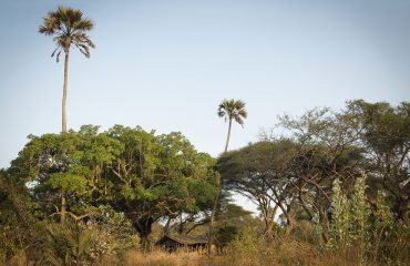 Chada Katavi Tented Camp