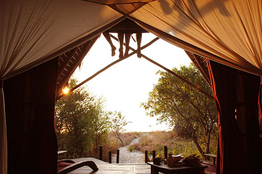 Tanzania Wild West, Nomad Greystoke Mahale 3 - Ultimate Wildlife Adventures