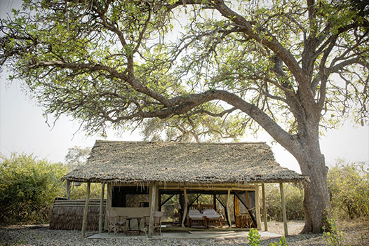 Tanzania Wild West, Nomad Kigelia Camp - Ultimate Wildlife Adventures