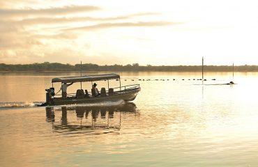 Enjoy a world class boating safari on the Rufiji River