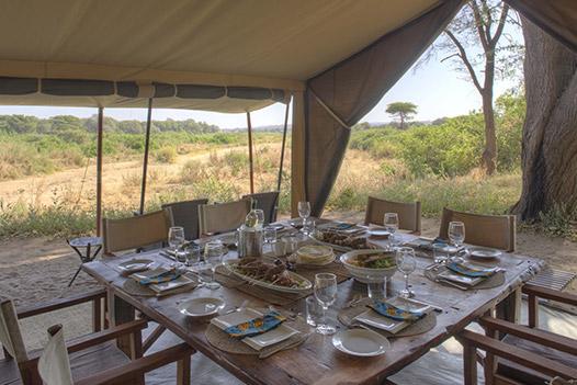 Walking with Giants Tanzania, Kichaka Frontier Camp 3 - Ultimate Wildlife Adventures