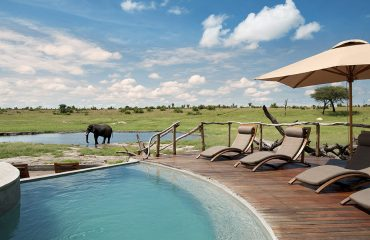 Watch game at the waterhole whilst taking a dip in the camp's pool
