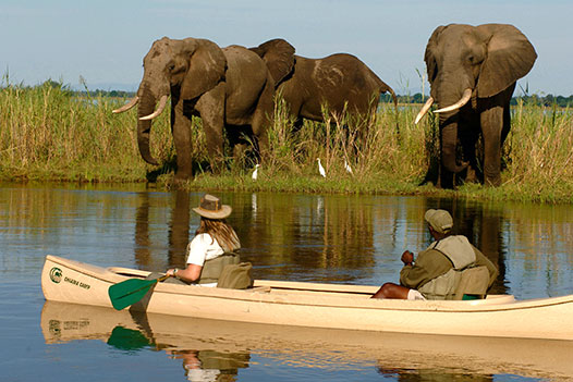 Zambia Luxury Honeymoon Overview 2 - Ultimate Wildlife Adventures