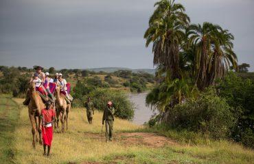Camel trekking along the Ewaso Nyiro River