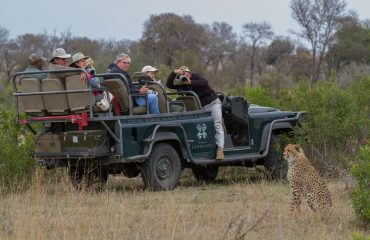 Open sided vehicles afford unobstructed game viewing