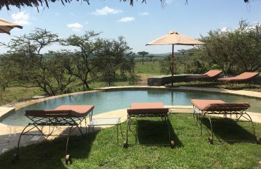Relax around Naboisho Camp's infinity pool and watch big game pass by