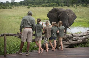 Skilled guides will teach your children the ways of the bush with safety as their primary objective.