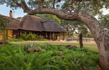 Jackalberry Lodge is situated in beautiful grounds in the Thorneycroft Private Game Reserve.