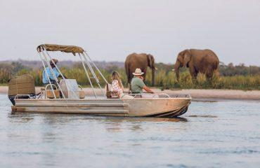 Motorboat safari