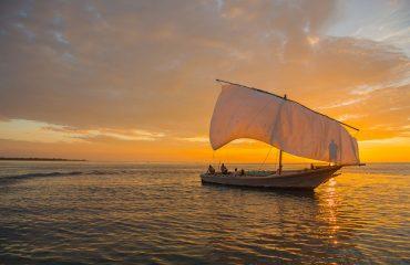 Pumulani cruises