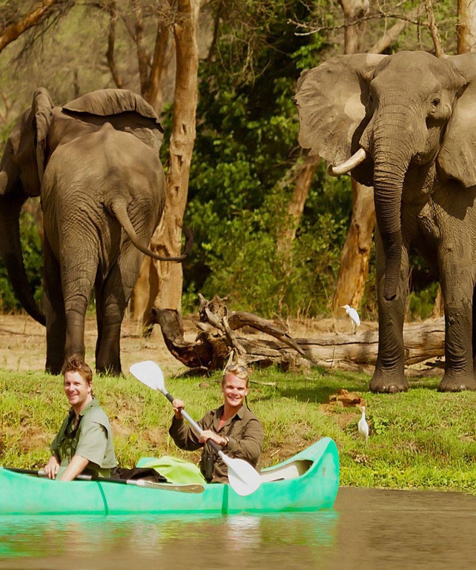 cover photo Canoe and Elephant Bulls